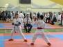 Фотозвіт II Чемпіонату Європи з карате-джитсу