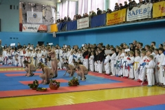 Фотозвіт IX Кубку України з Фунакоші шотокан карате 16-17листопада 2013р.