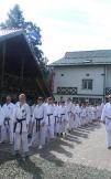 """Фотозвіт з літнього спортивно-оздоровчого табору «GASSHUKU-2014"""""""